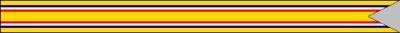 U.S. Navy American Defense Service Streamer
