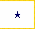 U.S. Navy Rear Admiral (1 Star) Restricted Flags