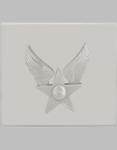 USAF Honor Guard Hap Arnold Buckle Nickel