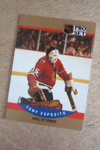 1990-1991 NHL Pro-Set Hockey Trading Cards (Canada)