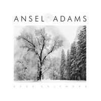 <center>ANSEL ADAMS 2020 WALL CALENDAR<center><center>(SOLD OUT!)<center>