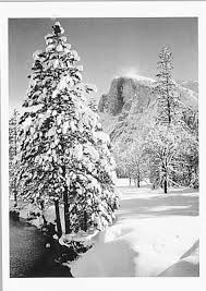 "HALF DOME, TREE, WINTER, FROM STONEMAN BRIDGE-ANSEL ADAMS HOLIDAY CARD ""SEASON'S GREETINGS"""