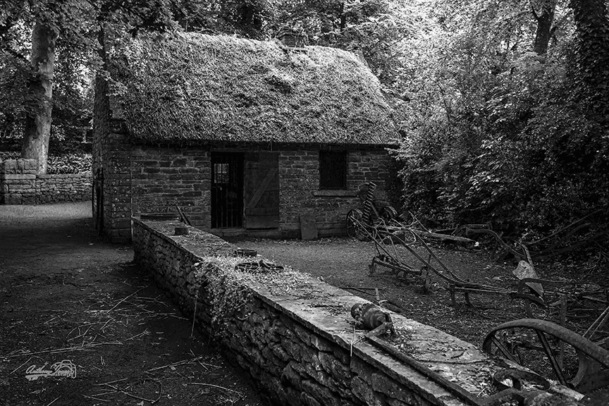 Thatched Roof Cottage - BW