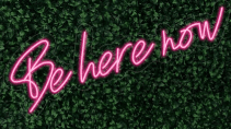 Be Here Now LED-FLEX Sign