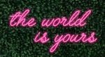The World is Yours 2 Lines LED-FLEX Sign