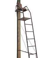Big Dog Blue Tick Ladder Stand 16 ft