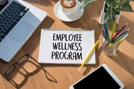 Ergonomics & Job Wellness Solutions