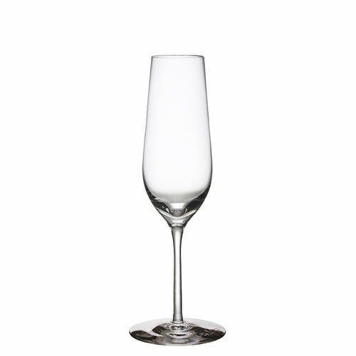 Orrefors Morberg Collection Champagne, Set of 4