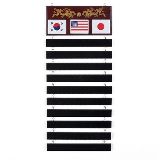 10 LEVEL MARTIAL ARTS BELT DISPLAY RACK