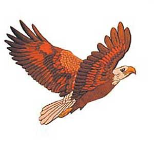 """11"""" FLYING EAGLE PATCH"""