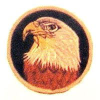 "3"" EAGLE PATCH"