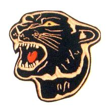 "4"" PANTHER PATCH"