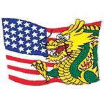 AMERICAN FLAG DRAGON PATCH