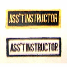 ASS'T INSTRUCTOR PATCH