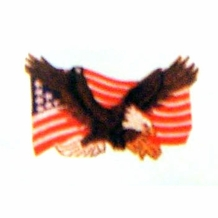 EAGLE + FLAG PATCH