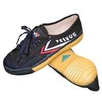 FEIYUE MARTIAL ARTS SHOES BLACK