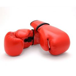 THAISMAI LEATHER BOXING GLOVES