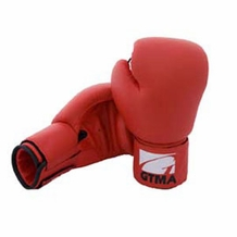 GTMA VINYL BOXING GLOVES