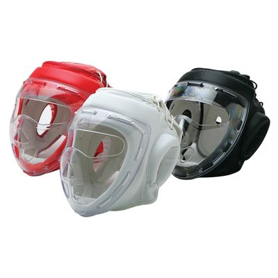 HEADGEAR WITH CLEAR MASK