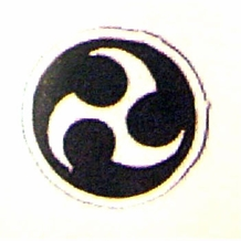 OKINAWAN KARATE PATCH