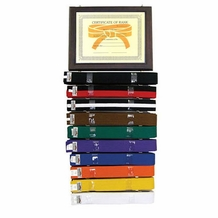 TIGER CLAW CERTIFICATE & RANK BELT DISPLAY
