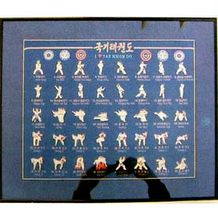 TKD PIN SET W/FRAME