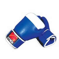 TWO TONE LEATHER BOXING GLOVES