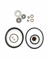 Chapin 6-4627 Industrial Repair Kit, Seal and Gasket