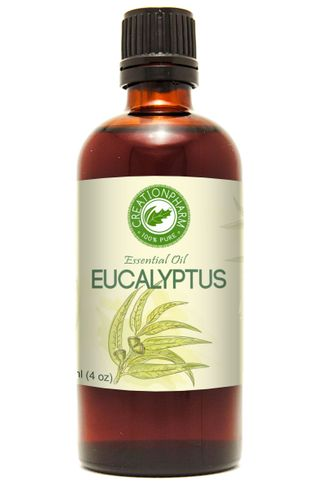 Eucalyptus Essential Oil 118 ml (4 oz)