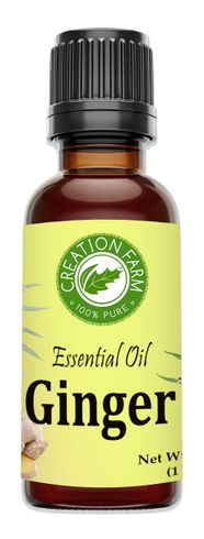 Ginger Essential Oil 30 ml (1 oz)