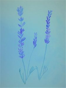 How to use Lavender to Restore Your Energy After An Illness