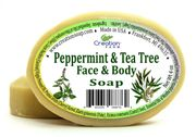 Peppermint & Tea Tree wholesale * 24 count * 2.45 ea