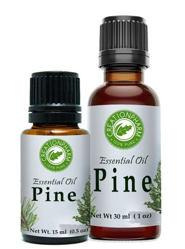 Pine Essential Oil 16 OZ (1 LB)