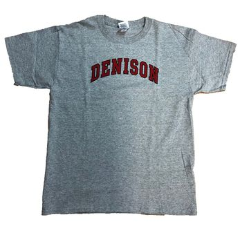 Denison Gildan Youth Tee Grey
