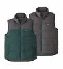 Patagonia Mens Reversible Bivy Down Vest Piki Green (Close Out)