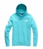 The North Face Antarctica Collectors Heavyweight Pullover Hoodie Bluebird