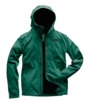 The North Face Mens Apex Flex GTX 2.0 Jacket Botanical Garden Green/ Botanical Garden Green (Close Out)