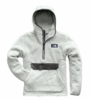 The North Face Mens Campshire Pullover Hoodie High Rise Grey/ Asphalt Grey  (close out)