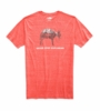The North Face Mens Pony Wheels Tri-Blend Short Sleeve Tee Fiery Red Heather