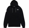 The North Face Mens Tekno Logo Hoodie Antarctica Edition TNF Black