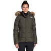 The North Face Womens Gotham Jacket New Taupe Green (autumn 2020)