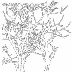 """Crafter's Workshop: Templates 6""""X6"""" - Branches - S/O"""