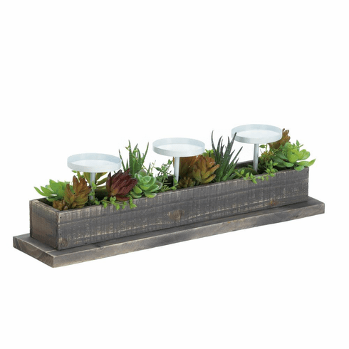 Reclaimed Wood Succulent Candle Display