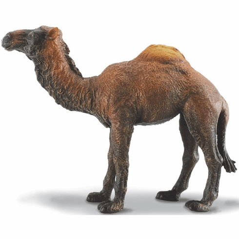 CollectA - Dromedary Camel