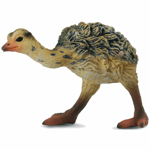 CollectA - Ostrich Chick - Walking