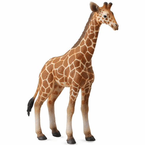 CollectA - Reticulated Giraffe Calf