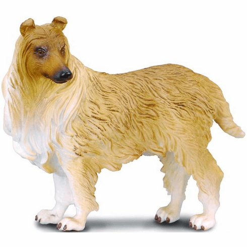 CollectA - Rough Haired Collie