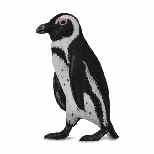 CollectA - South African Penguin
