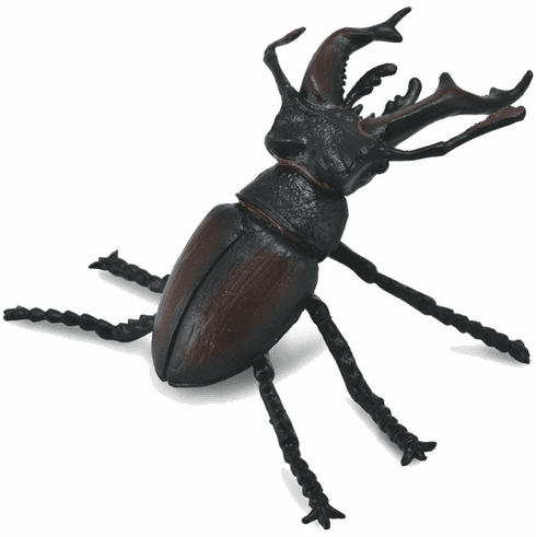 CollectA - Stag Beetle
