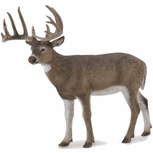 CollectA - White-Tailed Deer
